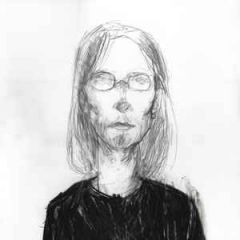 Cover Version - 2LP / Steven Wilson  / 2014