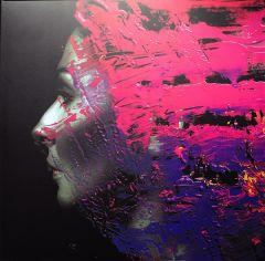 Hand. Cannot. Erase. - 2LP / Steven Wilson / 2015
