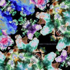 Labyrintens Farver - LP / Fribytterdrømme / 2015