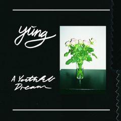 A Youthful Dream - LP (Limited klar vinyl) / Yung / 2016