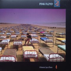 A Momentary Lapse of Reason - LP / Pink Floyd / 1987 / 2017