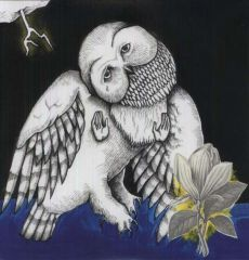 The Magnolia Electric Co. | 10th Anniversary Deluxe Edition - 2LP / Songs: Ohia / 2003 / 2013