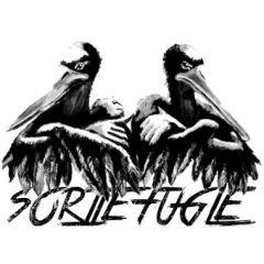 Sorte Fugle II - LP  / Sorte Fugle / 2017