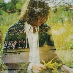 Primrose Green - LP / Ryley Walker / 2015
