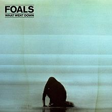 What Went Down - LP / Foals / 2015
